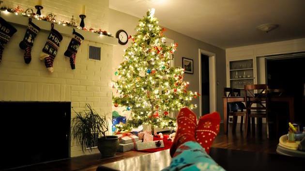 The Great Christmas Tree Debacle: The Saga Continues