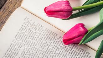 What Are You Reading? 5 Books This Divorced Mom Loves